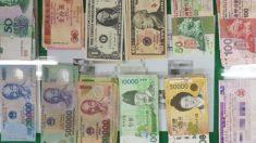 서울에서 잃어버린 '1억5천만원'든 지갑, 부산에서 찾은 여성