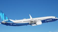 에티오피아 추락 여객기 '보잉737 MAX'기종, 국내에서도 운항 일시 중단된다