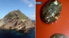 독도 해역에서 '항암 효과' 지닌 신물질 발견됐다