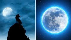 오늘(19일) 밤 불길함의 상징 '블루문' 뜬다