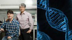 세계 최초로 '다운증후군 지적장애' 원인 밝혀낸 한국 연구진