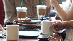 '세균 얼음' 사용하다 적발된 전국 프랜차이즈 카페 매장 리스트