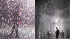 폭우 속 걷는데 젖지 않는 신비로운 '레인룸' 전시회 열린다