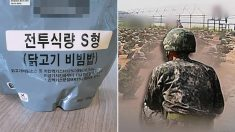 """""""전투식량서 귀뚜라미·고무줄 나와…보급 9개월만에 불량 16건"""""""
