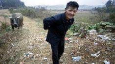 중국 농촌 '라라랜드'로 그린 유튜버 스타 '리즈치'…진짜 시골마을은?