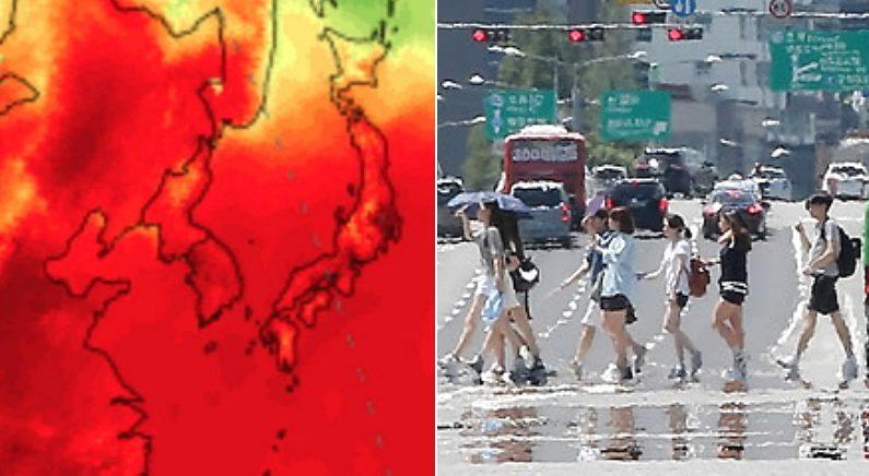 """""""2016년 여름 때보다 더 덥다"""" 올여름, 역사상 가장 무더운 '극한 더위' 온다"""