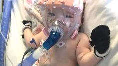 심장병 힘겹게 이겨낸 생후 6개월 아기가 퇴원 직전 코로나에 걸렸다