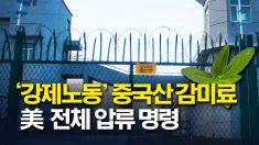 """美, '강제노동' 중국산 감미료 """"안 받는다"""""""
