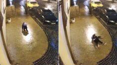 눈 온 다음날, 거리 CCTV에 '불쌍한 사람'이 찍혔다 (영상)