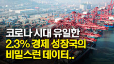코로나 시대 중국 경제 2.3% 성장?.. 전문가 의혹 제기