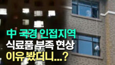 """""""먹을 것을 달라"""" 집에 갇힌 중국인들의 절규"""