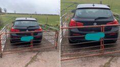 농장 입구 가로막고 주차한 BMW 주위에 울타리 쳐서 '참교육'한 농사꾼