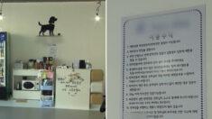 """""""사용료 100만원 내라"""" 가게 사진 블로그에 올렸다가 내용증명 받은 사장님"""